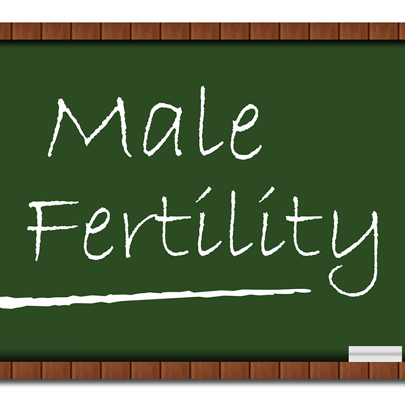 Bambú Clinic male fertility