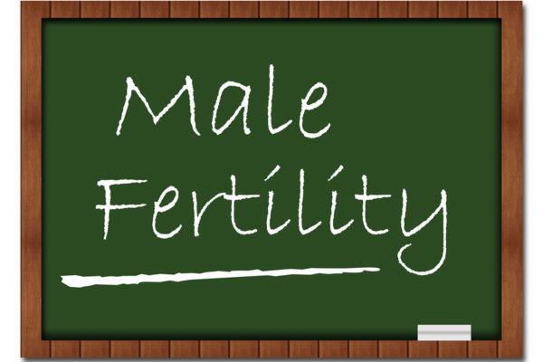 Dr. Krisko male fertility